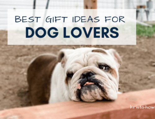 26 Best Gift Ideas for Dog Lovers