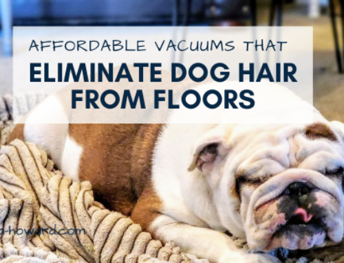 Top 10 Affordable Vacuums that Eliminate Dog Hair from Floors