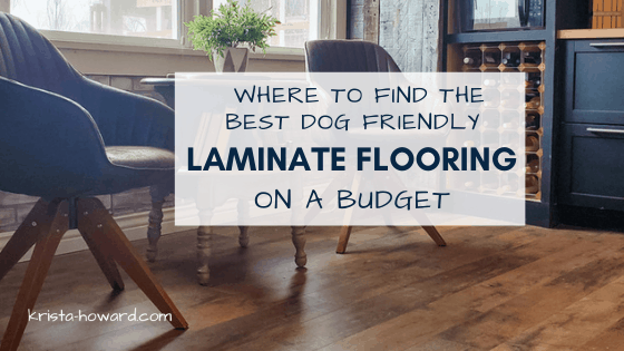 Where to Find the Best Dog Friendly Laminate Flooring on a Budget